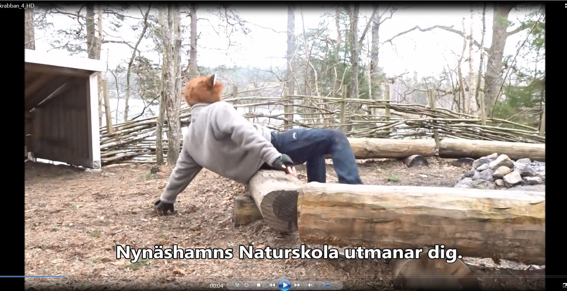 Räven Räv och Carl von Linné utmanar augusti 2020