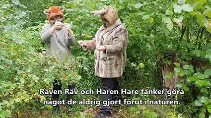 Räven och Haren har aldrig...